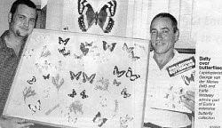 Batty over butterflies